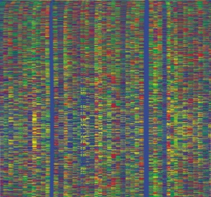 Output from an automated DNA sequencing machine